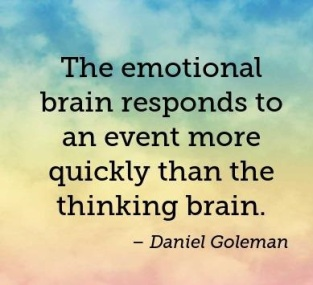 the-emotional-brain-responds-to-an-event-more-quickly-than-the-thinking-brain-403x403-nk6phk