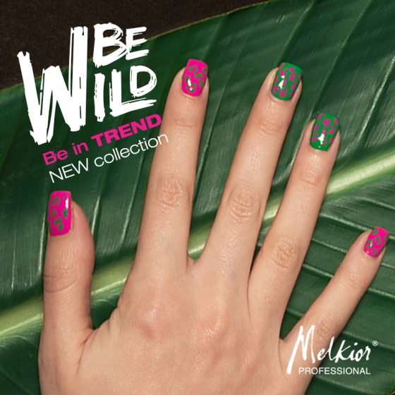 New Collection - BE WILD