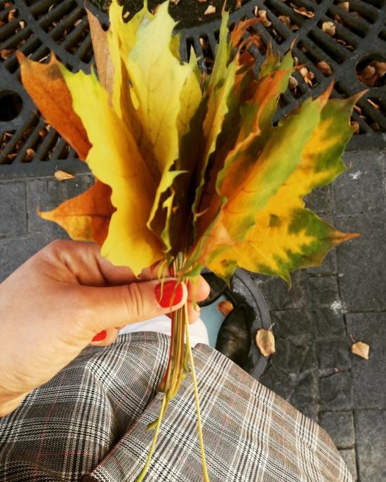buchet de frunze.jpg
