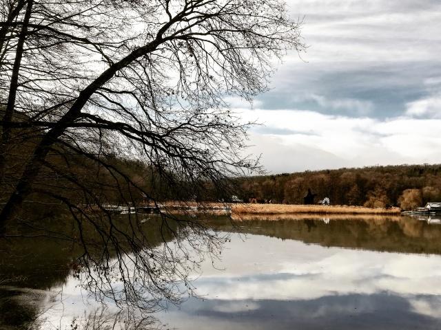 Lac Muzeul Astra